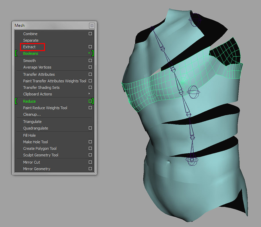 Maya rigging_Introduction to rigging a human torso_04